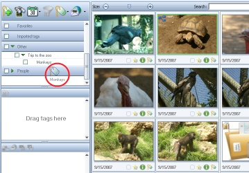 How to tag images using drag and drop operation